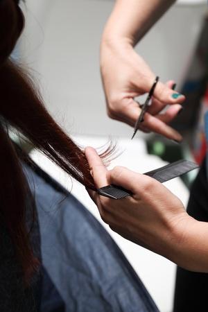 estilista: Peluquera cortando el pelo en interiores