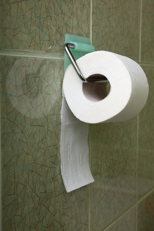 Toilet roll in green toilet, lavatory convenience restroom full tiled wall Stock Photo - 11974815