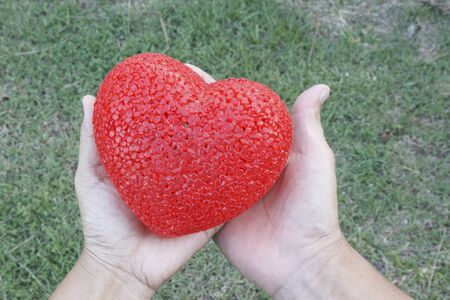 plastic heart: Male and female hands holding red plastic heart over grass