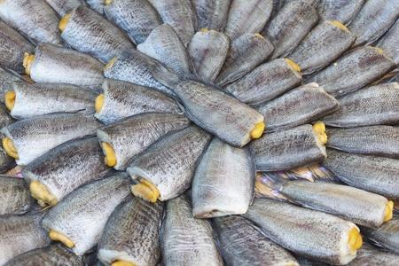 Dried salted snake skin gourami fish on Thailand market Stock Photo - 11308557