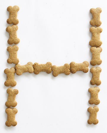 Letter H made of bone shape dog food on white background, shot directly from above photo