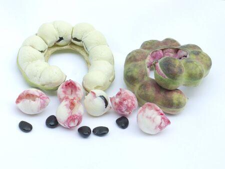 Manila tamarind (Pithecellobium dulce Benth.) fruit isolated on white background photo