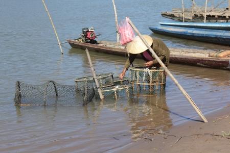 outdoor pursuit: Fisherman hunting fish in river of Laos