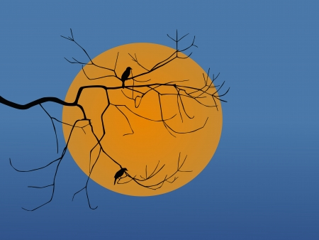 silhouette of bird sitting on a branch sunset Vector