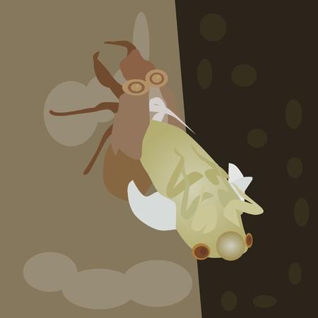 shedding: cicada nymph on tree Illustration