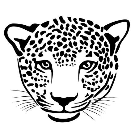 dexterous: Illustration of leopard isolated on white