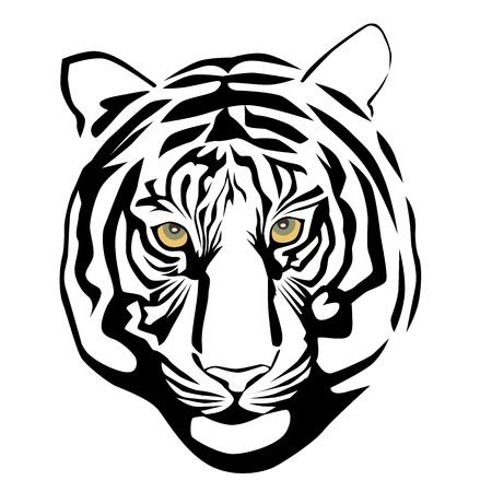 Vector illustration of tiger head
