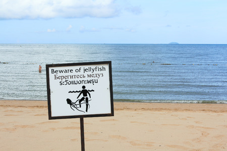 Beware of Jellyfish warning sign in Thailand Stock Photo - 22837638