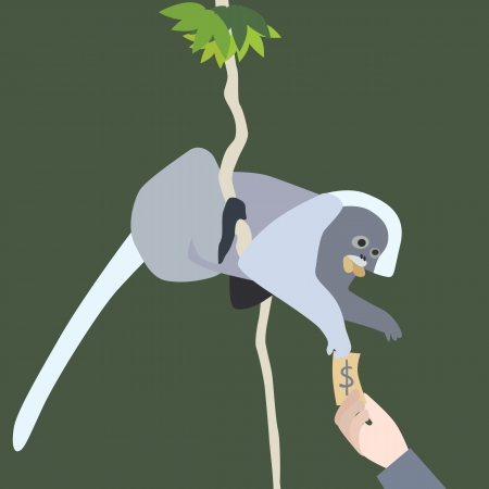 spectacled: Vector and Illustration of human hand give money to leaf monkey Illustration