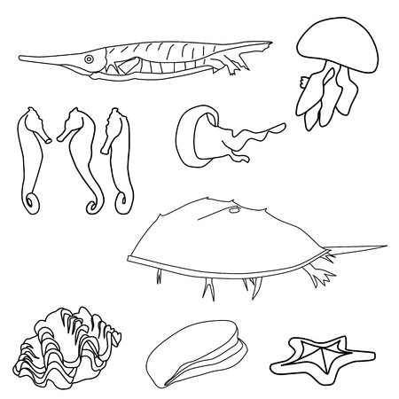Vector illustration of outlined sea life set Stock Vector - 24189671