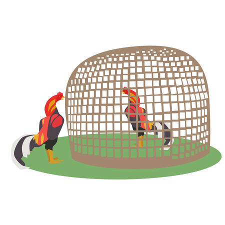 Vector and illustration of chicken in bamboo coop illustration