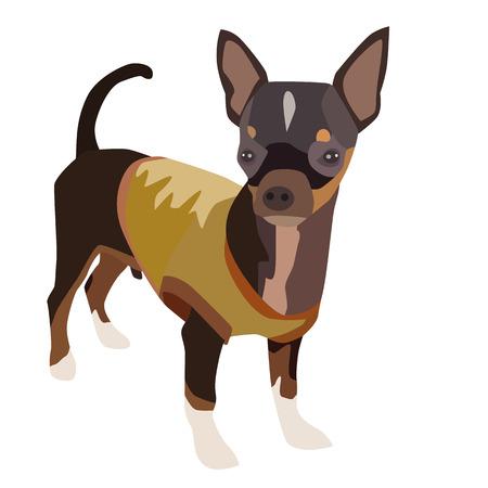 cartoon chihuahua: Vector illustration cute dog chihuahua Illustration