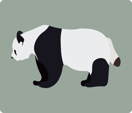 endangered: Vector illustration of panda