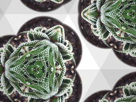Kaleidoskopkunst abstrakte Textur Hintergrund Standard-Bild
