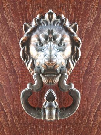 Handle lion on wood background of door