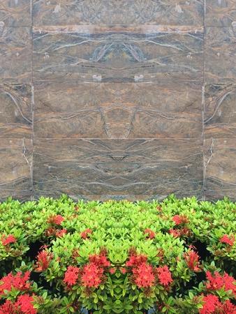 Closeup texture stone grunge wall background