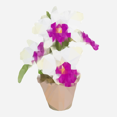 Vector illustration polygonal artificial white cattleya orchid flowers in flower pot isolated on white background