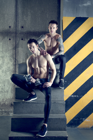 artes marciales mixtas: Gemelos hombres con mancuerna en el desv�n
