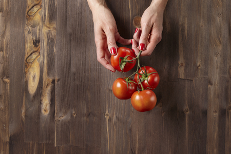 Fresh red delicious tomatoes on a branch in womans hands on wooden background Banque d'images