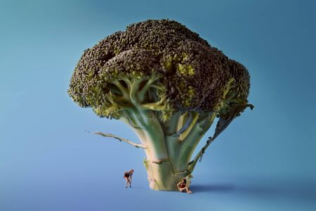 Microworld in women figures under the tree broccoli on blue background. Cartoon style, food photography