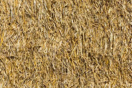 carbon neutral: Close-up view of a bale of straw.