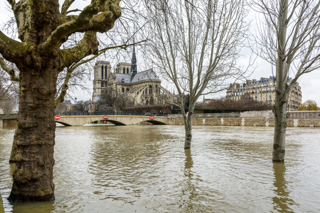View of Notre-Dame de Paris cathedral under a winter grey sky with the trees of the banks of the Seine half-immersed by the floodwaters in the foreground, during the flooding episode of January 2018.