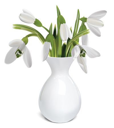 galanthus: Bouquet of snowdrops in a vase  Vector illustration