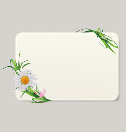 daisyflower: Card with grass and flowers. Vector illustration Illustration