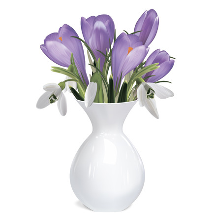 flowers in vase: Bouquet of crocuses and snowdrops. Vector illustration