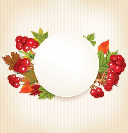 viburnum: Autumn Banner With Viburnum and Colorful Leaves. Vector illustration
