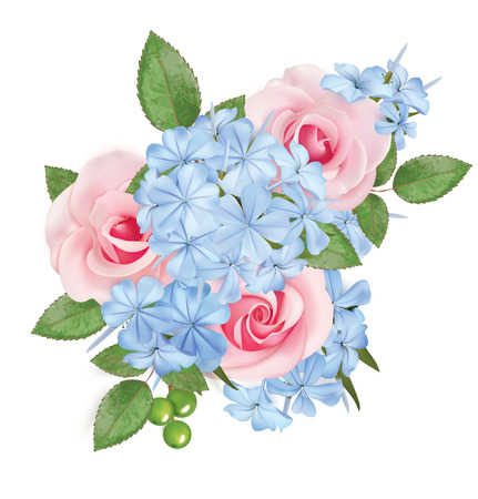 Bouquet of roses and phloxes. Vector illustration