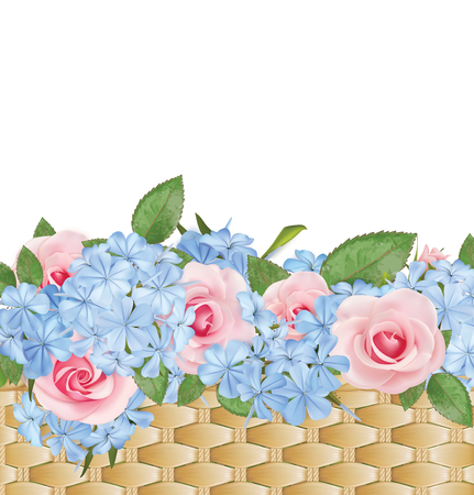 Bouquet of roses and phloxes in a basket. Summer floral background. Vector illustration