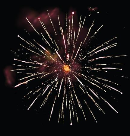 Fireworks on a black background. Vector illustration