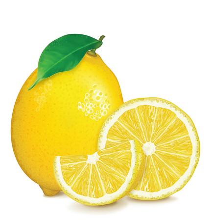 Fresh lemon with leaf and slices. Vector illustration