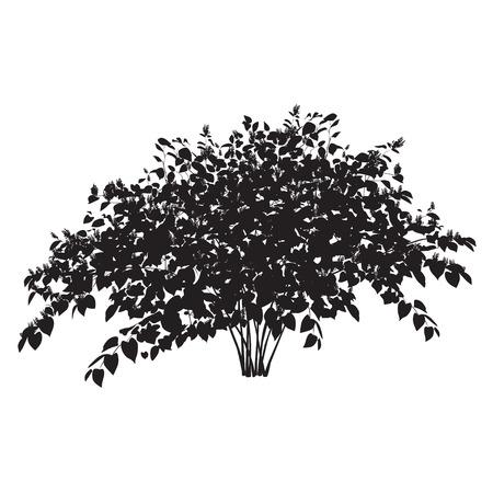 白地に花の雑木林そばブッシュのシルエット  イラスト・ベクター素材