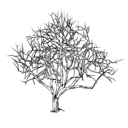 Tree trunk with fallen leaves in the winter, the graphic vector black-and-white drawing on a white background.