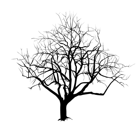 Tree silhouette with fallen leaves in the winter, the black-and-white vector drawing.