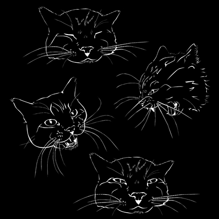 The attacking, quiet and sleeping cat, the black vector image on a white background