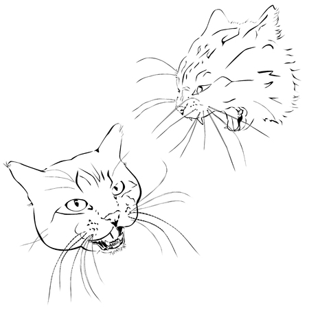The attacking cat, the black vector image on a white background