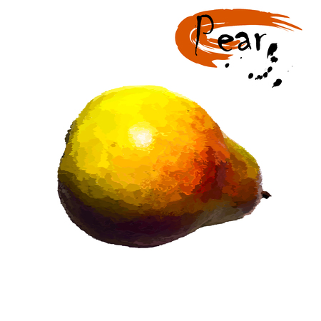 Ripe fruit of a pear, stylization of a watercolor, the color vector drawing on a white background with an inscription