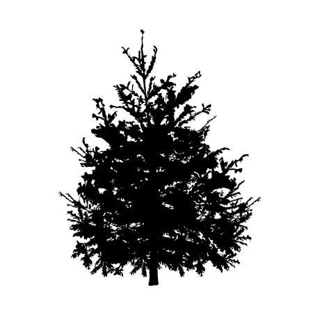 Fir-tree silhouette, the black vector image on a white background