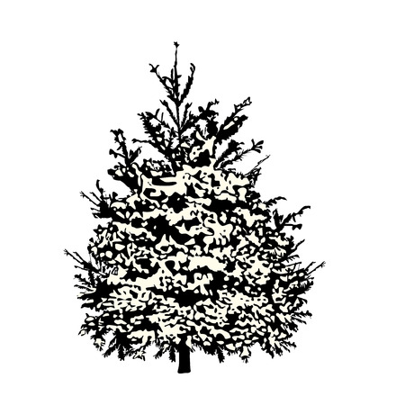 Fir-tree silhouette under snow cover, the black vector image on a white background Çizim