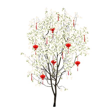 Chinese New Year - tree with white flowers and red flashlights, colored vector image on white background Çizim
