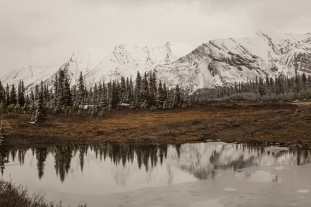 icefield: Reflection in a lake on the Icefield Parkway