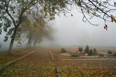 exhalation: The autumn street. Stock Photo