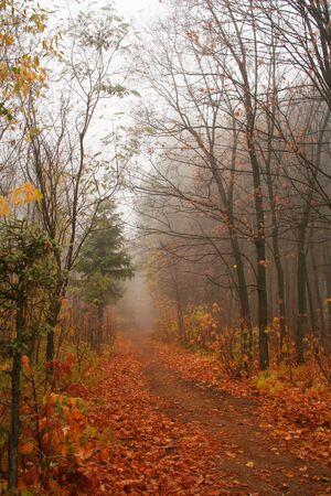 exhalation: The autumn.