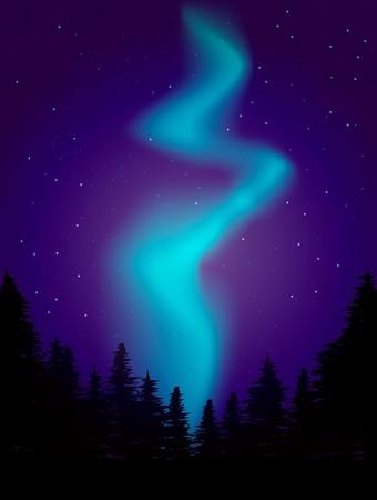 night landscape illustration
