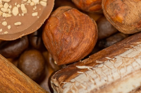 coffee beans, cinnamon and nuts photo