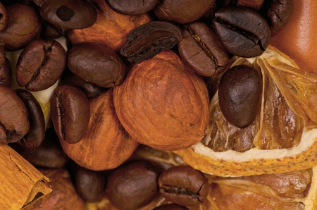 coffee beans and nuts photo