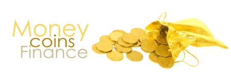 Money coins in golden bag isolated on white Stock Photo - 12862711